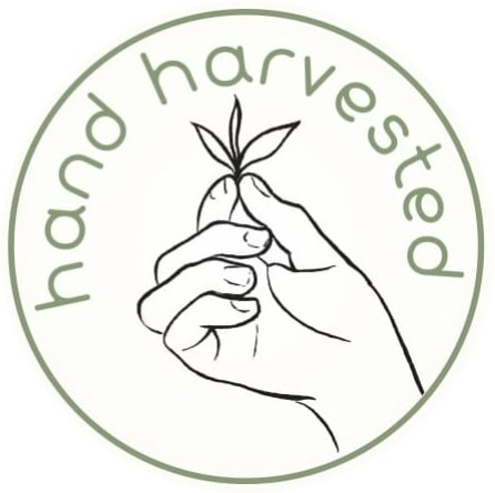 hand harvested (1)